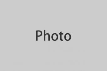 写真大(長辺342px)サイズ、配置:左